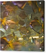 Blurred Image Of Fish Swimming In An Acrylic Print