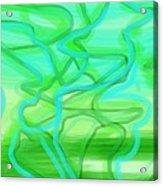 Bluzul Vergreen II Acrylic Print by Rosana Ortiz