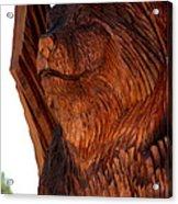 Bobcat Closeup Acrylic Print