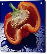 Bold Pepper Acrylic Print