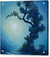 Bonsai I Acrylic Print