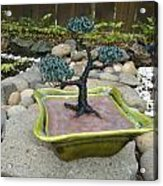 Bonsai Tree Green Medium Acrylic Print