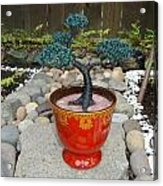 Bonsai Tree Medium Red Glass Vase Planter Acrylic Print