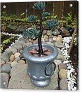 Bonsai Tree Medium Silver Vase Acrylic Print