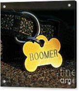 Boomer Gear Acrylic Print