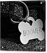 Boomer's Acrylic Print