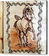 Born To Be Free-sylver  Horse Pyrography Acrylic Print