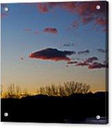 Bosque Del Apache Acrylic Print