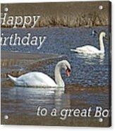 Boss Birthday Card - Mute Swans On Winter Pond Acrylic Print