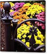 Boston Flowers Acrylic Print