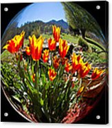 Bouquet In A Bubble Acrylic Print