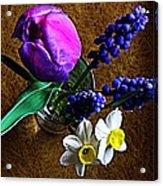 Bouquet Of Bulbs Acrylic Print