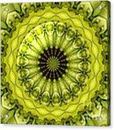 Bouquet Of Roses Kaleidoscope 11 Acrylic Print