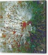 Bouquet Of Snowflakes Acrylic Print