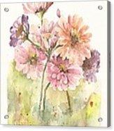 Bouquet Zinnias II Acrylic Print