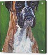 Boxer Acrylic Print by Lee Ann Shepard