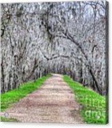 Brazos Bend Pass Acrylic Print