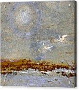 Breakwater Acrylic Print by Carol Leigh