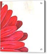 Bride's Bouquet Acrylic Print