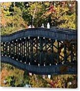 Bridge 3 Acrylic Print
