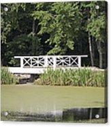 Bridge Over An Algae Covered Pond Acrylic Print by Jaak Nilson