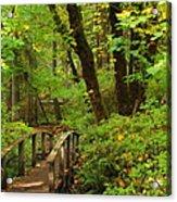 Bridge To A Fairytale Acrylic Print