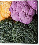 Broccoli With Yellow And Purple Cauliflower, Studio Shot Acrylic Print