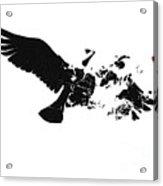 Broken Peace Acrylic Print