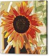 Bronze Sunflower Acrylic Print
