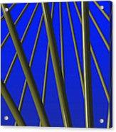 Bronze Sunlight Acrylic Print