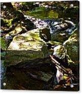 Brook Fall 31 Acrylic Print