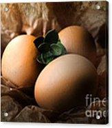 Brown Easter Eggs Acrylic Print