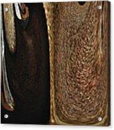 Brown Metal Acrylic Print by Skip Nall