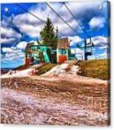 Brown Spring Acrylic Print
