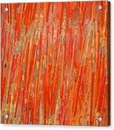 Brush View Acrylic Print