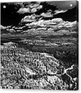 Bryce Canyon Ampitheater - Black And White Acrylic Print