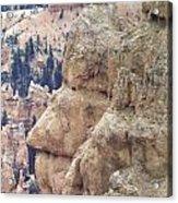 Bryce Canyon National Park 4 Acrylic Print