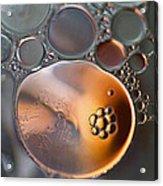 Bubbles V Acrylic Print