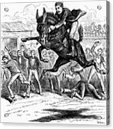 Bucking Mule, 1879 Acrylic Print