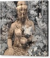 Buddha Nature Acrylic Print