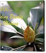 Budding Beauty Acrylic Print