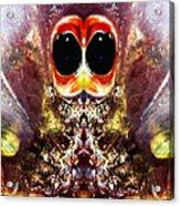 Bug Eyes Acrylic Print by Skip Nall