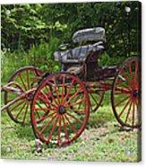 Buggy 11628 Acrylic Print