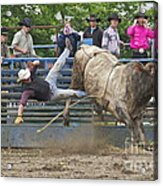 Bull 1 - Rider 0 Acrylic Print by Sean Griffin