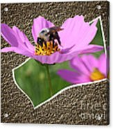 Bumble Bee Pop Out Acrylic Print