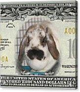 Bunny Money Acrylic Print