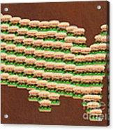 Burger Town Usa Map Brown Acrylic Print