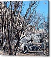 Burned Forest 4 Acrylic Print