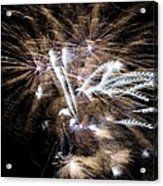 Bursting In Air Two Acrylic Print
