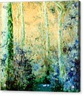 Bush Trail At Sunrise Acrylic Print